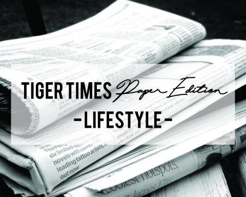 tt-paper-lifestyle