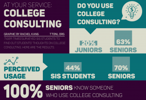 college-consulting-infographic