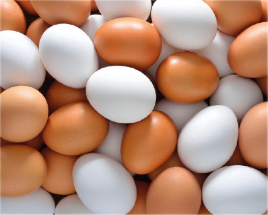 Korean Food Ministry scrambles to halt sales of pesticide-contaminated eggs
