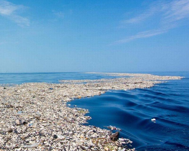 Global efforts to revoke plastic pollution