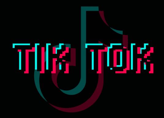 TikTok gains popularity among teens