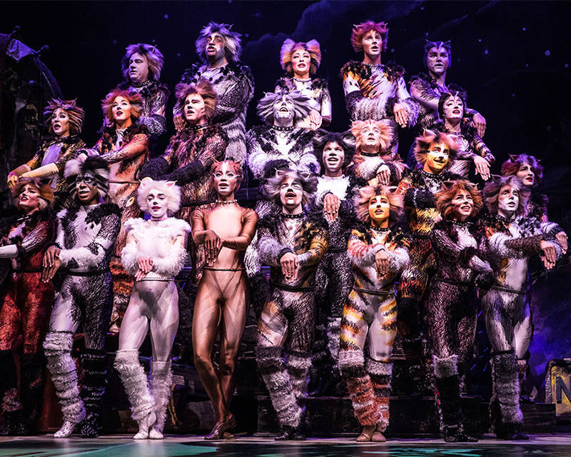 """""""Cats"""" leaves viewers disappointed and dissatisfied"""