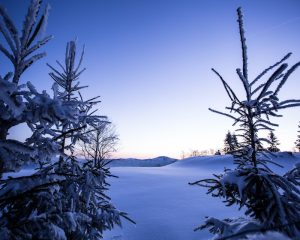 Winter sports season begins in earnest